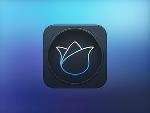 Lily software icon